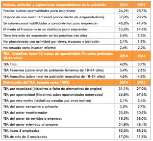 Informe-Gem-Comunidad-Valenciana-2015.png